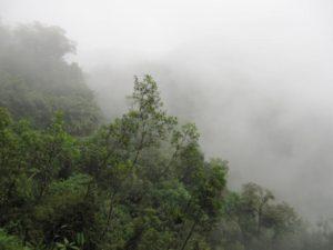 17 dagen – Onbekend Zuid Colombia