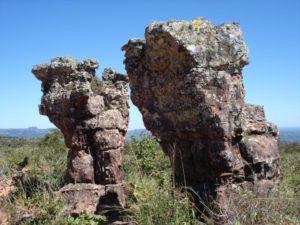 16 dagen – Amazone Pantanal en Rio de Janeiro
