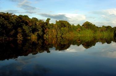 Tuparro Orinoco Colombia