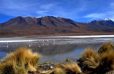 Bestemmingen Bolivia - Home