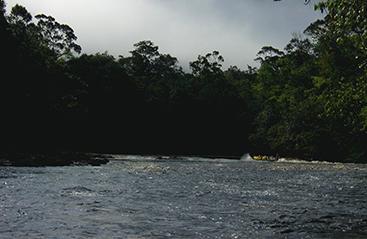 Bestemmingen Suriname - Bestemmingen