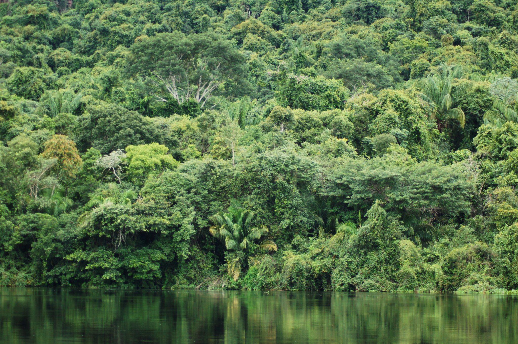 Header 18 dagen Amazone Ecuador Galapagos Cruise - Home