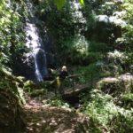 18 dagen Avontuurlijke Zuidwest Costa Rica rondreis