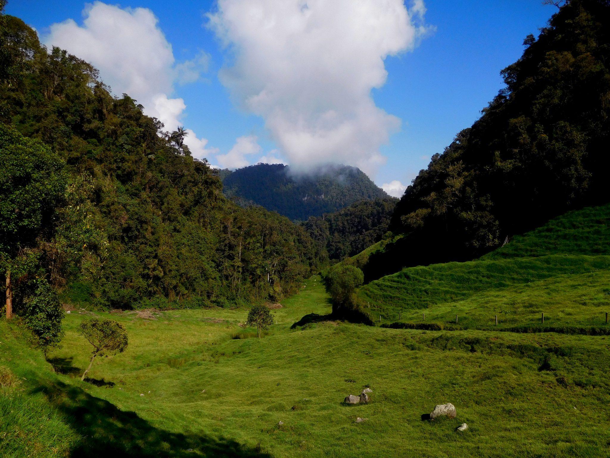 18 dagen – Bijzonder & onontdekt Colombia