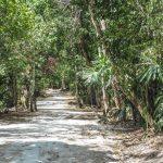 3 dagen – Jungle trekking naar Tikal