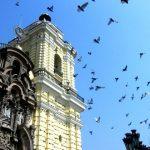 11 dagen – Peru Culinair