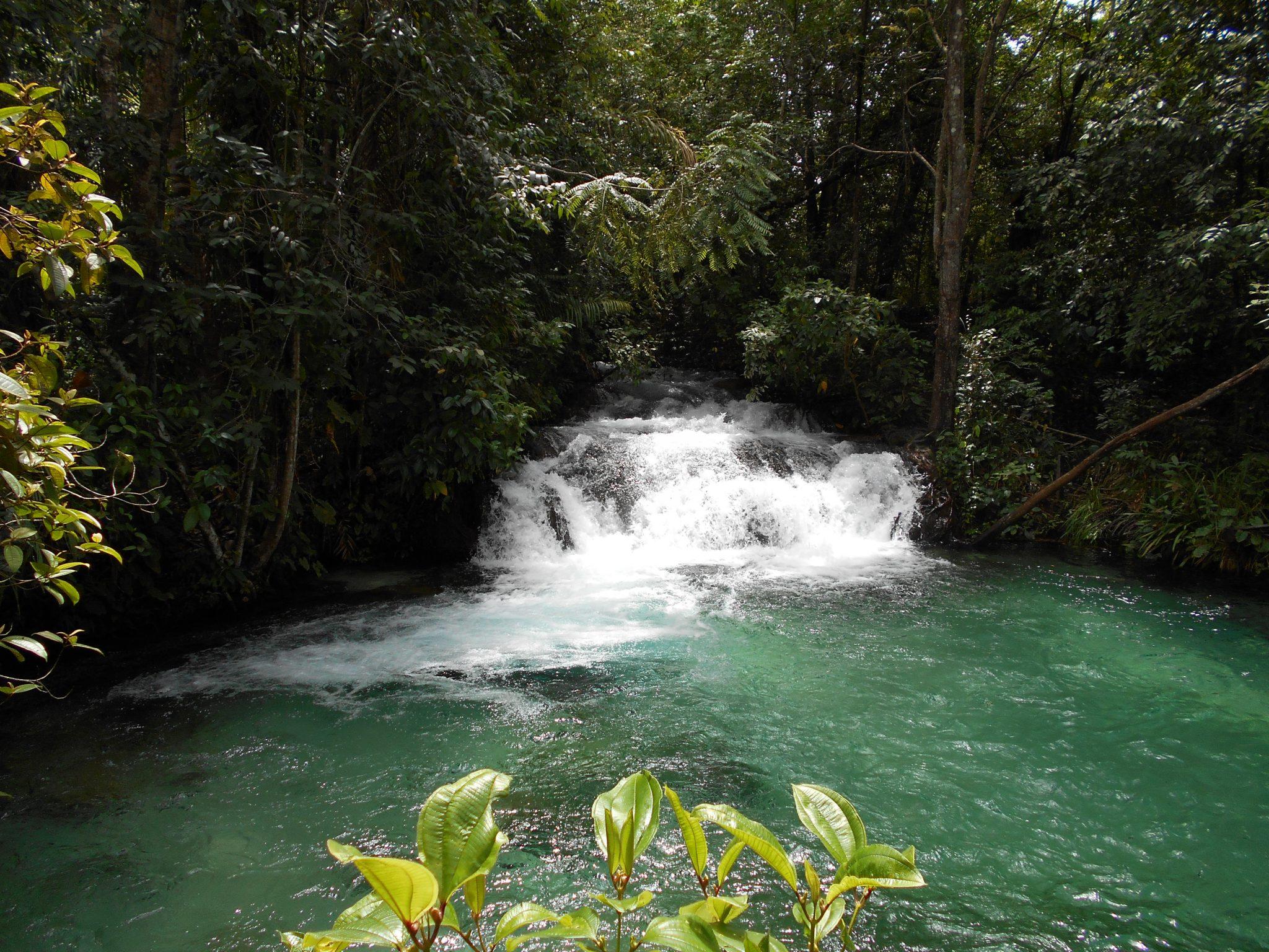 10 dagen - Paradijselijk Tocantins 9