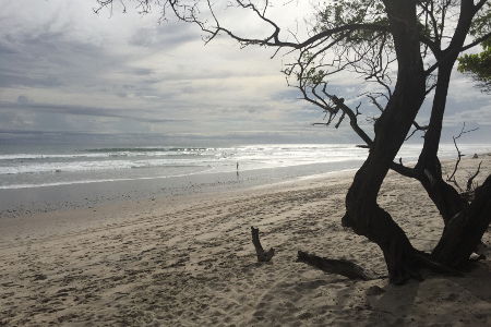 Olaf Reizen Costa Rica Voorbeeldreizen